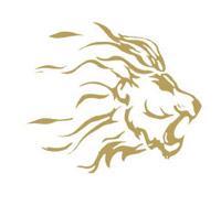 Lions Bergamo Asd